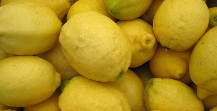 JibberJobber Bitter Truth Lemons Lemonade