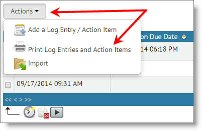 log_entry_action_item_report_print