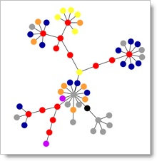 nework graphs