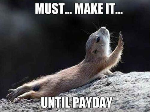 payday_rodent